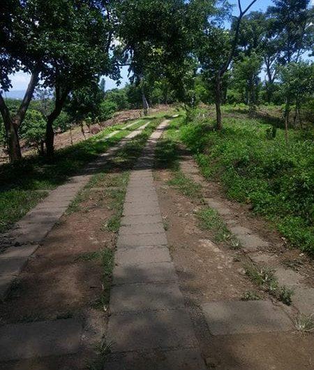 Se vende terreno 2,000 en san Isidro de Bolas