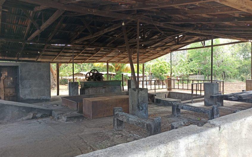 Finca en Nicaragua, Santa Teresa Carazo