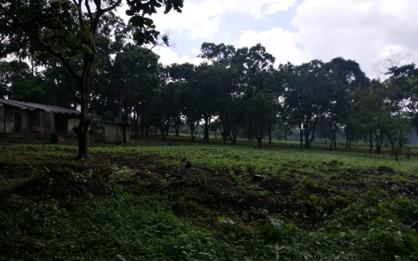 TERRENO DE 4 MANZANAS EN VENTA ÁREA SEGURA FÁCIL ACCESO Y CALLE ADOQUINADA