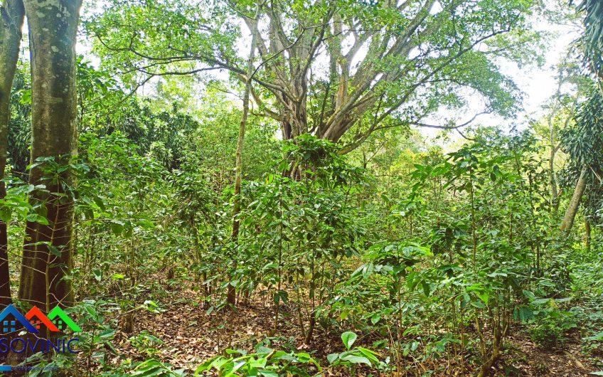 Finca en venta en Diriamba en Nicaragua